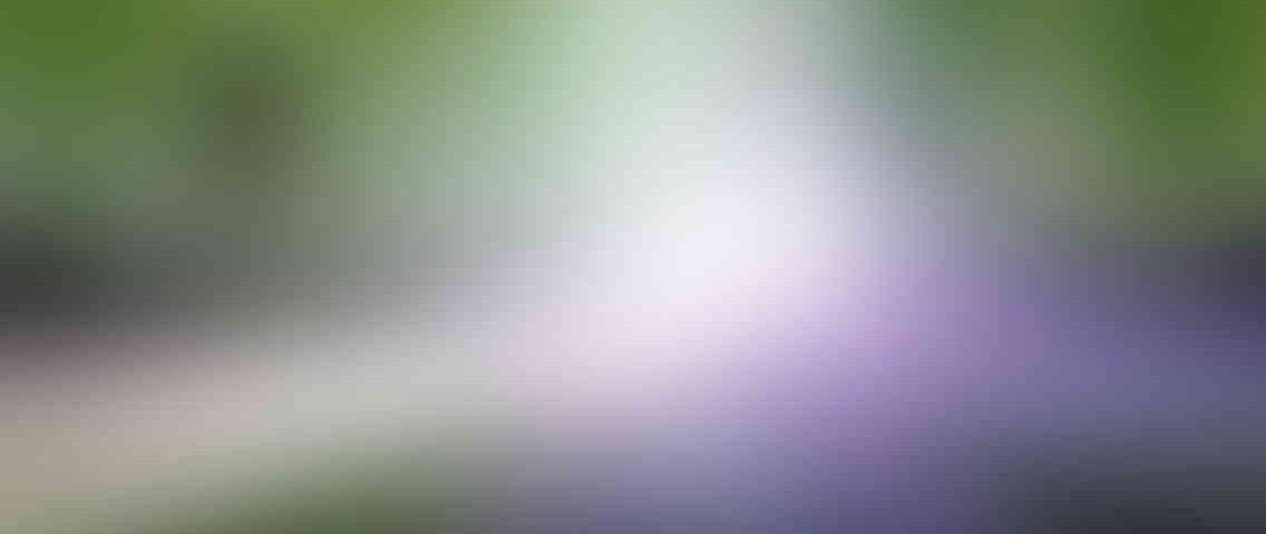 http://pirlantaisgiyim.com.tr/wp-content/uploads/2013/03/standout_slide_1_v01-1136x480.jpg