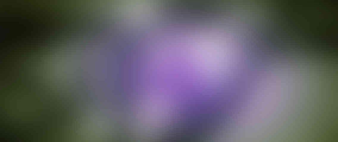 http://pirlantaisgiyim.com.tr/wp-content/uploads/2013/03/standout_slide_3_v01-1136x480.jpg